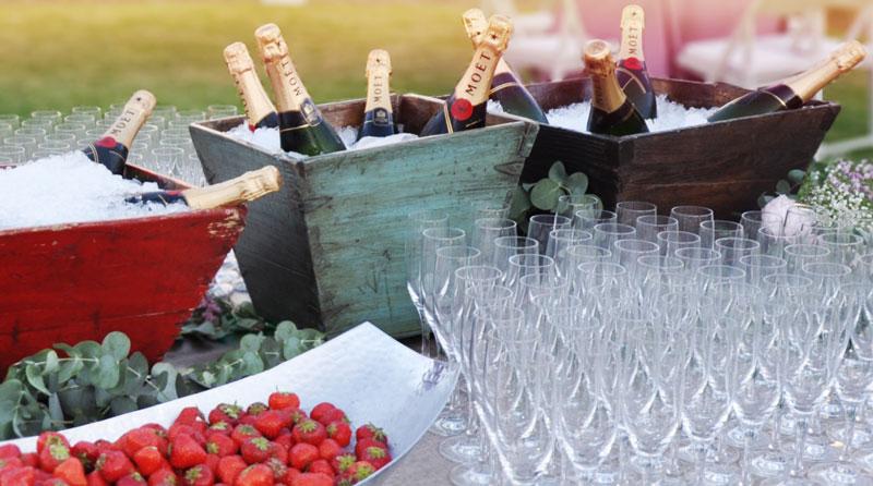 finca-malpartida-refresca-a-tus-invitados-champagne