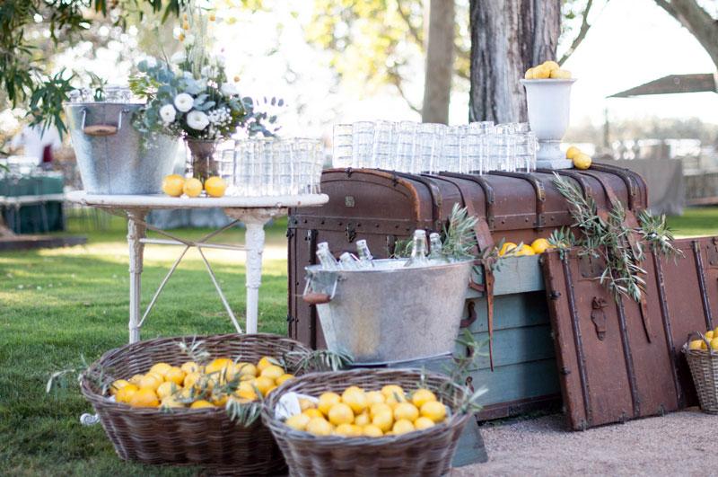 finca-malpartida-refresca-a-tus-invitados-limonada-2