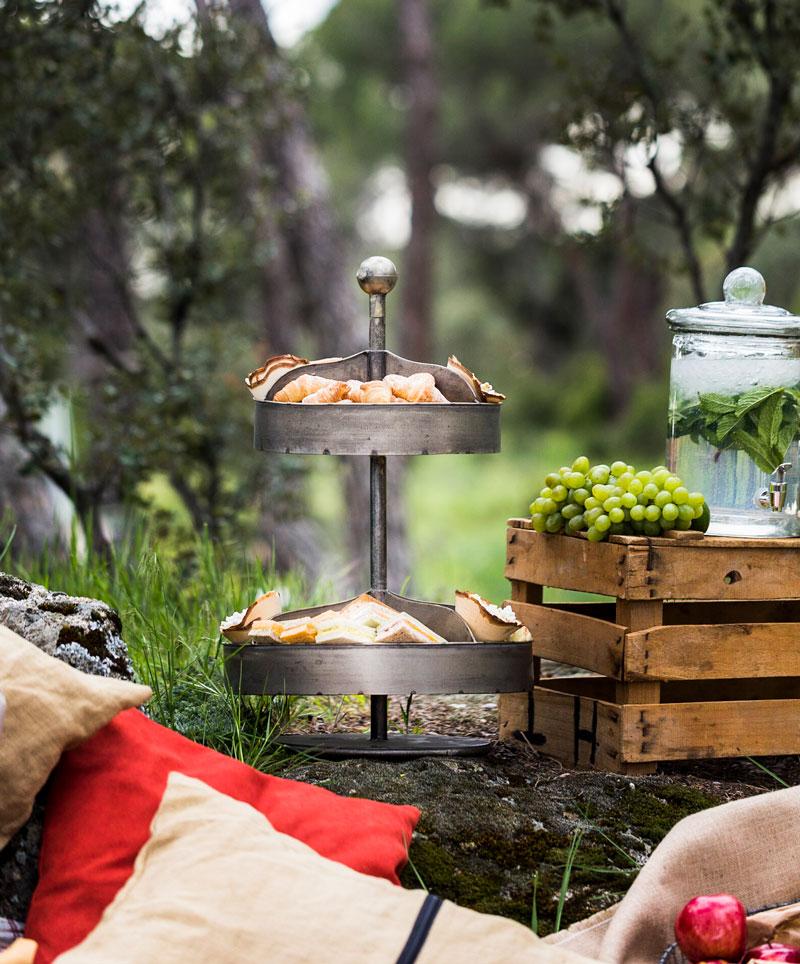 picnic en el campo para una despedida de soltera